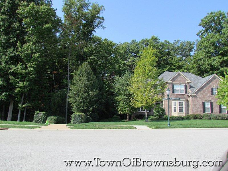 Arbor Springs, Brownsburg, IN: Woods