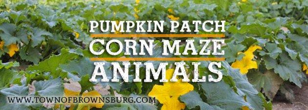 brownsburg_pumpkin_patch
